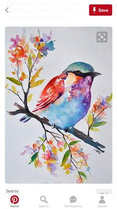 Original Watercolor Bird Painting, Pastel Colored Rainbow Roller, Colorful Watercolor Flowers Inch, watercolor painting on acid free paper. size: cm / approx Inch Signed and dated on the front. Watercolor Bird, Watercolor Paintings, Simple Watercolor, Watercolor Tattoo, Pastel Watercolor, Watercolor Artists, Easy Paintings, Paintings Of Flowers, Bird Paintings On Canvas