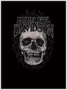 HD Harley Davidson skull