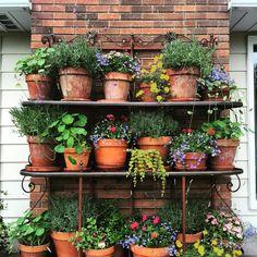 46 Awesome Brick Patterns Patio Ideas For Your Beautiful Yard Small Balcony Garden, Small Garden Design, Rooftop Garden, Citrus Garden, Home Vegetable Garden, Garden Pots, Outdoor Bakers Rack, Brick Patterns Patio, Flower Garden Plans