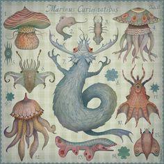 Marine Curiosities II Art Print by Vladimir Stankovic