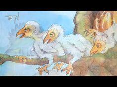 *▶ Prentenboek: RTi Droomland aflevering 1 Het vogeltje dat te ver vloog.