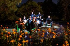 Musicians in the Asteraceae Garden for Enlighten - Luminous Botanicus.