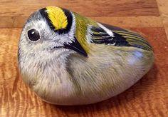 Bird painted rock