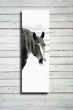 Looking - 20x60 Canvas print - Horse photography - Black and White horse photography - Horse decor - Horse photography - Horse art via Etsy. Neat Picutre. I could do something like this.