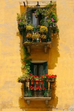 Italy Art Print featuring the photograph Venice Balcony by Carl Jackson Fachada Colonial, Balcony Flowers, Italy Art, Balcony Design, Balcony Ideas, Balcony Garden, Window Boxes, Flower Boxes, Windows And Doors