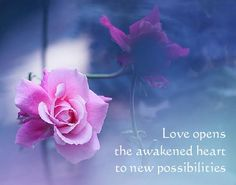Love opens the awakened heart to new possibilities