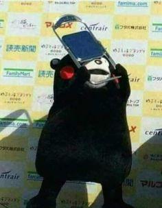 Kumamon usa tu ataque con la silla! :v Yoonmin, Cute Memes, Funny Memes, Rilakkuma, Kpop, Cursed Images, Wholesome Memes, Mood Pics, Meme Faces