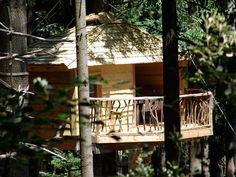 Fotos i videos - Cabanes als arbres, Sant Hilari Sacalm