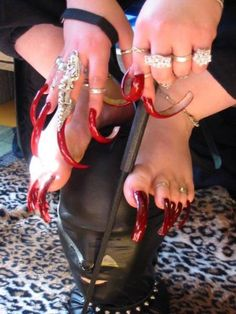 How To Grow Your Nails Fast and Have Long Ugly Fingernails and Toenails - WTF: Other than the really long nails this woman's fingernails and toes don't look hav Crazy Nail Art, Crazy Nails, Weird Nails, Funky Nails, Woman With Longest Nails, Long Fingernails, Red Toenails, Hair Fails, Curved Nails