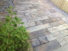 Stonemarket, Timberstone, Driftwood, Sleepers. UK Paving at LSD.co.uk IS THERE ANYTHING LIKE THIS IN USA?