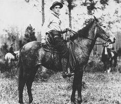 Florida Cracker Horse