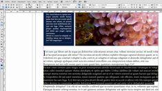 62 Ideas De Indesing Editorial Disenos De Unas Adobe Indesign Tutoriales
