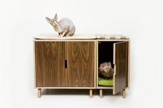 Seattle-based Modernist Cat designs Mid-Century Modern accessories for your feline — tailored to please your kitty without compromising your exquisite home décor!