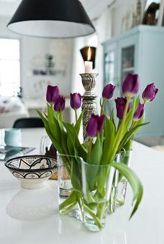 Tulips in Aalto vase. Tulips In Vase, Purple Tulips, Blue Hydrangea, Purple Rain, Blue Flowers, Tulips Garden, Planting Flowers, Fresh Flowers, Beautiful Flowers