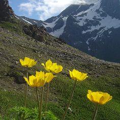 Undiscovered Places of Svaneti. Most Beautiful, Beautiful Places, Kazakhstan, Bergen, Ukraine, Climbing, Georgia, Russia, Hiking