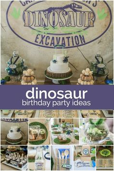 Boy's Dinosaur Themed Birthday Party Ideas