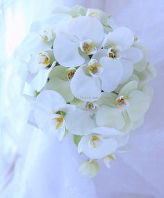 ブーケ オーバル こちょうらん 都ホテル様 : 一会 ウエディングの花