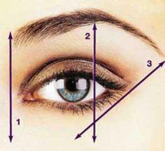 Hou zelf je wenkbrauwen bij,nadat de schoonheidsspecialist ze heeft geëpileerd.  1.trek rechte lijn met een make-up potlood van je binnenooghoek naar je wenkbrauw (lijn 1)  2.trek een rechte lijn van je buitenooghoek naar je wenkbrauw (lijn 3.)alles wat buiten de lijnen valt kan worden weggehaald.  3.teken een rondje tegen de wenkbrauw,recht boven je iris (hier begint je boog).trek rechte lijn van de zijkant van je pupil naar de wenkbrauw (lijn 2.),dit is het hoogste punt.Alles er buiten kan…