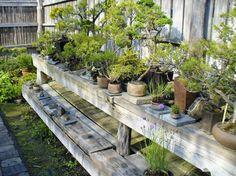 Japanischer Garten - KWR Rathenow