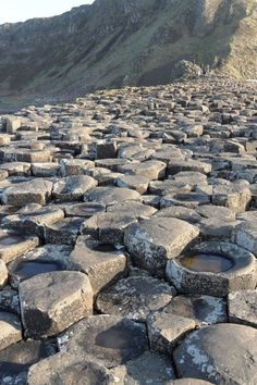 Image galleries and information about my visited World Heritage Sites. - Details for the World Heritage Site 'Giant's Causeway and Causeway Coast' in Bushmills, Northern Ireland Basalt Columns, Earth Science, Northern Ireland, World Heritage Sites, Great Britain, Geology, Coast, Landscape, Nature
