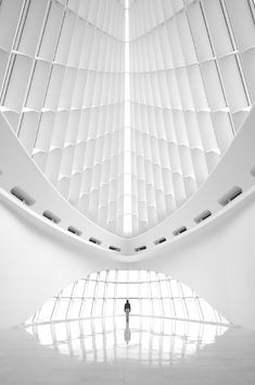 Quadracci Pavillion at the Milwaukee Art Museum. I have been here, a beautifully designed museum.