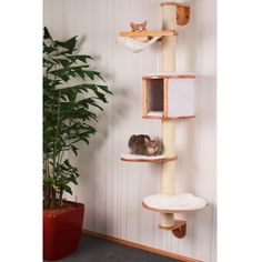 Kerbl-wandkratzbaum-dolomita-gatos-muro-rascador-LaDigue-montaje-en-pared
