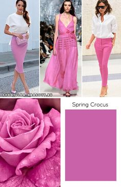 Spring crocus Pantone | Color trends 2018 #color #trends #2018