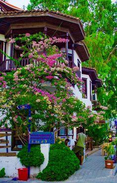 Foto Beautiful World, Beautiful Gardens, Beautiful Flowers, Beautiful Homes, Wonderful Places, Beautiful Places, Outdoor Living, Outdoor Decor, Bougainvillea