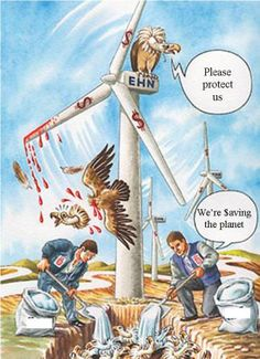 Bird Studies Canada  – why bother doing the summary if you know more than half the birds are not being collected? Why is the specific data on each projects 'kill' confidential? Do the wind companies own the wildlife here too? Seems like it.