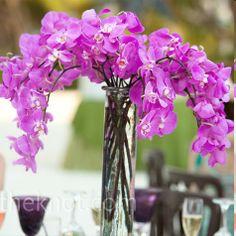 diy Un grand vase long et fin en verre accueille quelques branches d'orchidées fraiches