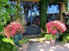 Une Boutique de fleurs à la Provence
