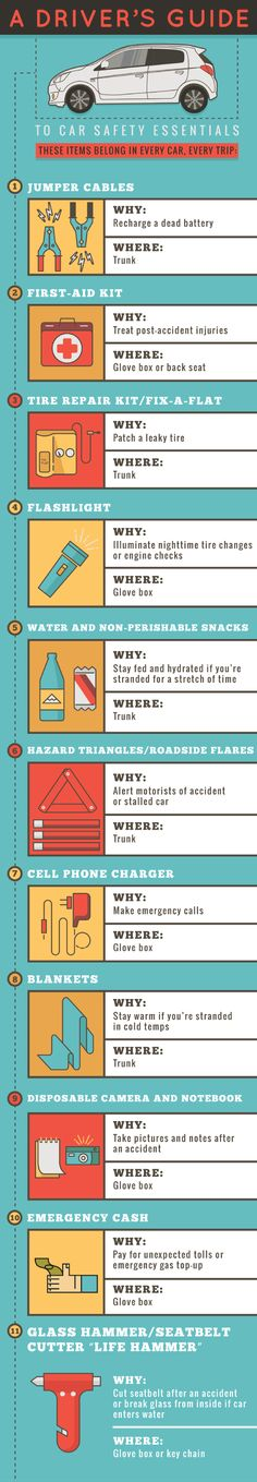 A Driver's Guide To Car Safety Essentials #Infographic #Safety #driver http;//finelinedrivingacademy.co.uk