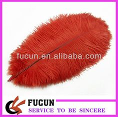 Red Party Ostrich Feather For Sale Photo, Detailed about Red Party Ostrich Feather For Sale Picture on Alibaba.com. Custom Puppets, Wedding Centerpieces, Wedding Decorations, Ostrich Feather Centerpieces, Red Party, Ostrich Feathers, Crochet Hats, Detail, Gifts