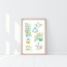 Spine and Vertebra Abstract Anatomy Art Print, printed on beautiful fine art paper, brings art in colorful, joyous form to your or practices Anatomy Art, Human Anatomy, Medical Gifts, Physical Therapist, Office Art, Fine Art Paper, Art Prints, Abstract, Student