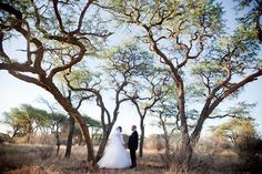 A romantic bush wedding, South Africa