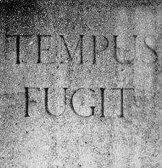 tempus fugit (et numquam revertitiur) - Time flies (and never returns) i have fewer days ahead than i have behind me. I don't have time to waste.