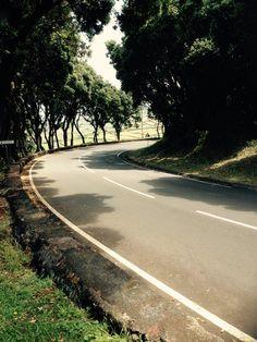 Road  #NynkeHovenga