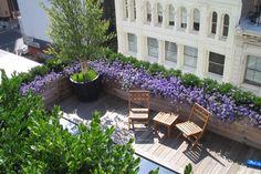 SoHo Terrace « Gunn Landscape Architecture, PLLC.