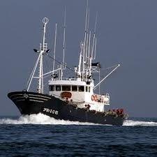 pesqueros vascos -