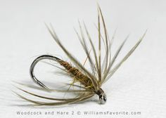 Woodcock and Hare Flymph 2 - William Anderson -WilliamsFavorite.com (Wet Fly, Spider, Flymph, Soft Hackle, Soft-hackle, Emerger, Fly Patterns)