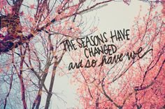 Immagine di quote, season, and change