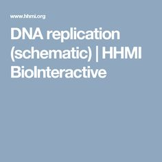 63 best genetics structure of dna replication images on the structure of dna discovered by james watson and francis crick suggests a mechanism of replication the double helix unwinds and each strand acts as a fandeluxe Images