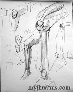 "Anatomy Studies Demo: ""Figure Studies"" - Page 2 Leg Anatomy, Anatomy Poses, Anatomy Study, Anatomy Art, Human Drawing Reference, Human Anatomy Drawing, Anatomy Reference, Pose Reference, Drawing Legs"