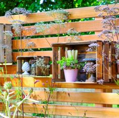 Composez un décor végétal le long d'un palissade en bois en faisant pousser des plantes en pot et en décorant avec des objets divers placés dans des cagettes.#mur #végétal #cagettes #plantes #jardin #clôtures