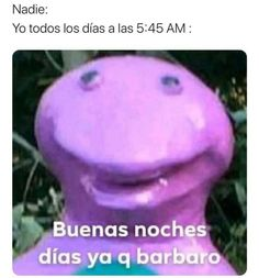 Blackpink Memes, Kpop Memes, Funny Memes, Reaction Pictures, Funny Pictures, Bob Meme, Spanish Memes, Have Some Fun, Haha