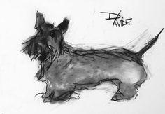 Valerie Davide dog Haggis