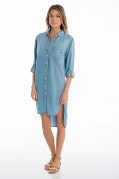 Dani Denim Dress