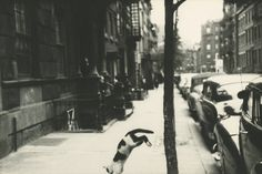 Saul Leiter - Perry Street cat, c.1949 5 1/8 X 7 3/4 inches Gelatin silver print; printed c.1970