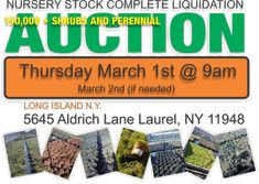 This is a nursery auction which is coming up this Thursday March 1. It consists of over 150,000 containerized plants . This is nursery stock grown on Long Island. Which are used for landscaping commercial and residential projects. Consisting of plants that attract hummingbirds are deer resistant, native species, and drought, sun and partial shade, and salt tolerant species.