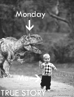 Monday's are just another day to me, but I thought this was kinda cute